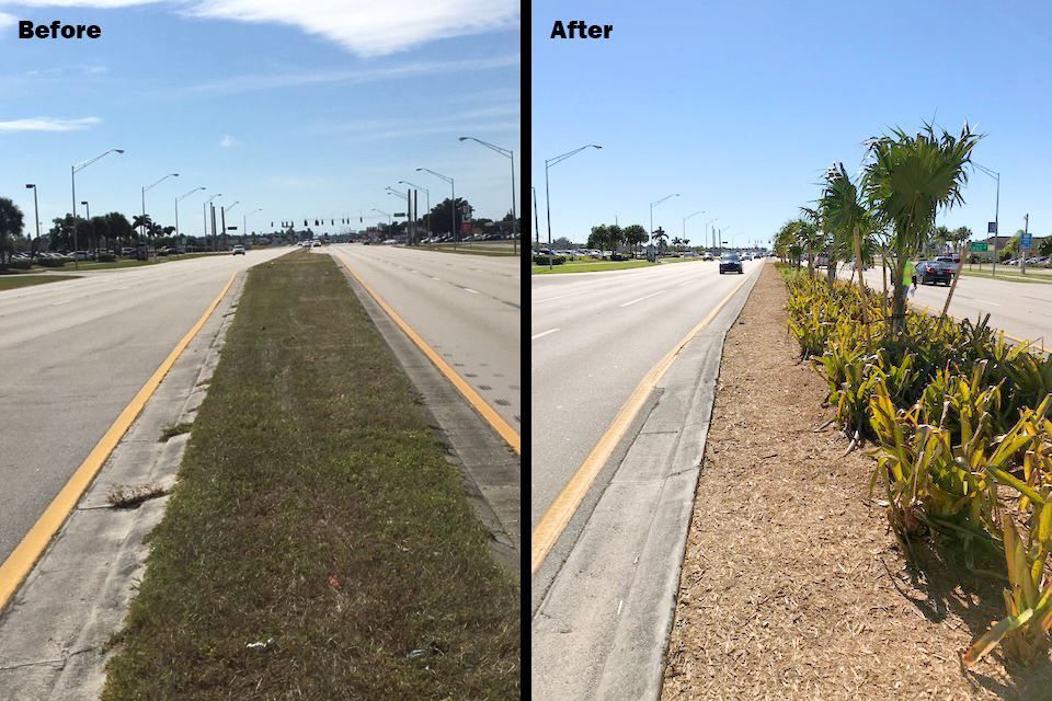 Cleveland Avenue Medians Before and After Landscaping